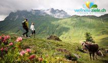 CHF 700.- Gutschein für einen Urlaub im Wellnesshotel Warther Hof in Österreich gewinnen