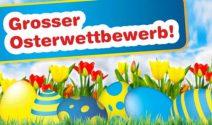 Frühjahrsputz, Qualipet Gutscheine und Tierfutter nach Wahl gewinnen