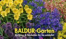 BALDUR Gutschein, Gartentasche oder Windlicht Stecker gewinnen