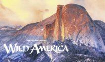5 x 2 Tickets für den Film «Wild America» gewinnen