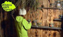 Wildnispark Zürich Tickets für die ganze Familie gewinnen