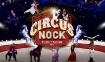 10 x 2 Circus Nock Tickets gewinnen