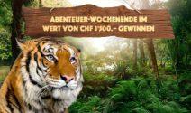 Erlebnis Weekend in Hamburg oder Wien im Wert von CHF 3'500.- gewinnen