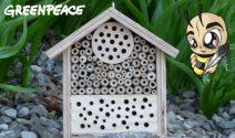 Jeden Monat ein Bienenhotel gewinnen