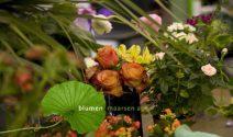 Jeden Monat einen hochwertigen Blumenstrauss gewinnen