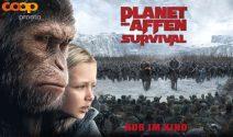 Schweden Reise zu zweit und Planet der Affen Goodies gewinnen