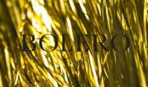 Jeden Tag einen tollen Adventspreis von Bolero gewinnen