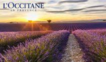 Provence Ferien gewinnen