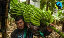 Peru Reise oder Coop Gutscheine gewinnen