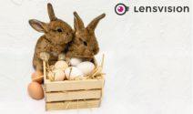 5 x Halbjahres Ration Kontaktlinsen gewinnen