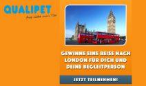 London Reise zu zweit oder Peter Hase Tickets und Goodies gewinnen