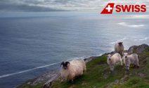 Irland Ferien inkl. Flüge und Mietauto gewinnen