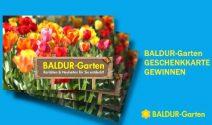 Einen Baldur-Garten Gutschein gewinnen